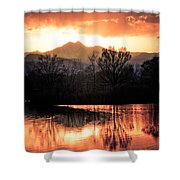 Goose On Golden Ponds 1 Shower Curtain by James BO  Insogna