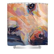 Grace Shower Curtain by Kimberly Santini