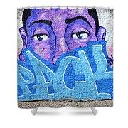 Graffiti Art Santa Catarina Island Brazil Shower Curtain by Bob Christopher