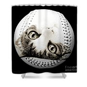 Grand Kitty Cuteness Baseball Square B W Shower Curtain by Andee Design