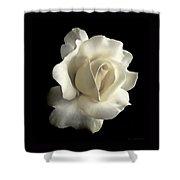 Grandeur Ivory Rose Flower Shower Curtain by Jennie Marie Schell