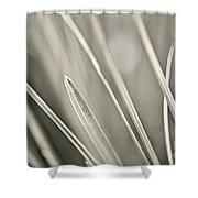 Grass Shower Curtain by Elena Elisseeva