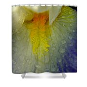 GREAT BEAUTY IN TINY PLACES Shower Curtain by Jeff  Swan