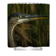 Great Blue Profile Shower Curtain by Ernie Echols
