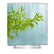 green bamboo Shower Curtain by Priska Wettstein