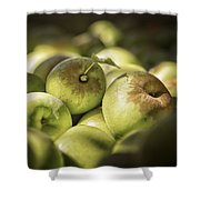 Green Jewels Shower Curtain by Caitlyn  Grasso