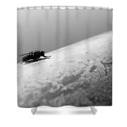 Ground Level Eyes  Shower Curtain by Jerry Cordeiro