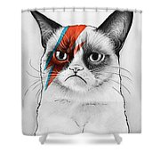 Grumpy Cat As David Bowie Shower Curtain by Olga Shvartsur