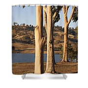 Guardians Of The Lake Shower Curtain by Linda Lees