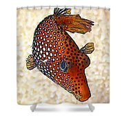 Guinea Fowl Puffer Fish Shower Curtain by Bill Caldwell -        ABeautifulSky Photography