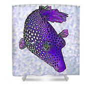 Guinea Fowl Puffer Fish In Purple Shower Curtain by Bill Caldwell -        ABeautifulSky Photography