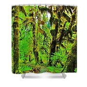 Hall Of Moss Shower Curtain by Benjamin Yeager