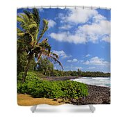 Hana Beach Shower Curtain by Inge Johnsson
