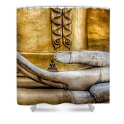 Hand Of Buddha Shower Curtain by Adrian Evans