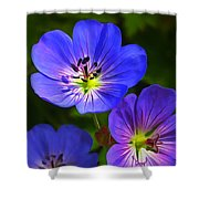Happy Face Shower Curtain by Bill Caldwell -        ABeautifulSky Photography
