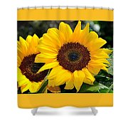 Happy Sunflowers Shower Curtain by Kaye Menner