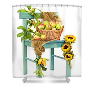Harvest Fayre Shower Curtain by Amanda And Christopher Elwell