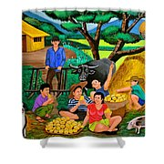 Harvest Time Shower Curtain by Cyril Maza