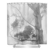 Haunted Forest Shower Curtain by Jenny Rainbow