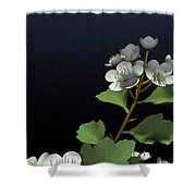Hawthorne Shower Curtain by Cynthia Decker