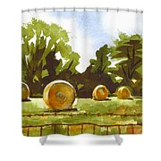 Hay Bales At Noontime  Shower Curtain by Kip DeVore