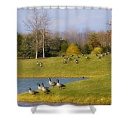 Heading South Shower Curtain by Julie Palencia