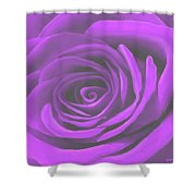Heart Of A Purple Rose Shower Curtain by SophiaArt Gallery