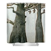 Heartwood Shower Curtain by Charlie Baird