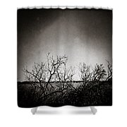 Hedgerow Shower Curtain by Dave Bowman