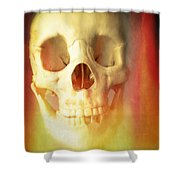 Hell Fire Shower Curtain by Edward Fielding