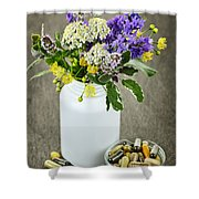 Herbal Medicine And Plants Shower Curtain by Elena Elisseeva