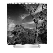 Here As I Stand Shower Curtain by Laurie Search