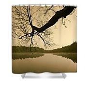 Hewitt Pond Shower Curtain by David Gordon