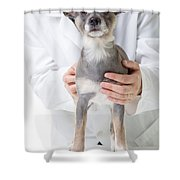 Hey Watch It That's Cold Shower Curtain by Edward Fielding