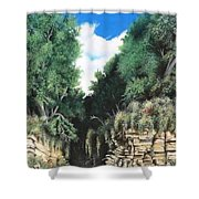 Hidden Canyon Shower Curtain by David Neace
