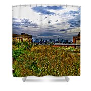 High Line on the Hudson Shower Curtain by Randy Aveille