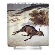 Hind Forced Down In The Snow Shower Curtain by Gustave Courbet