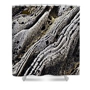 History Of Earth 11 Shower Curtain by Heiko Koehrer-Wagner