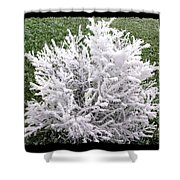 Hoarfrost 20 Shower Curtain by Will Borden