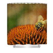 Honey Bee On Flower Shower Curtain by Dan Friend