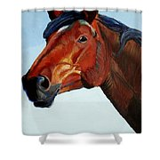 Horse Head Shower Curtain by Mike Jory