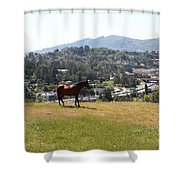Horse Hill Mill Valley California 5d22662 Shower Curtain by Wingsdomain Art and Photography