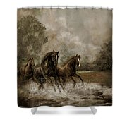 Horse Painting Escaping The Storm Shower Curtain by Regina Femrite