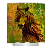 Horse Paintings 001 Shower Curtain by Catf