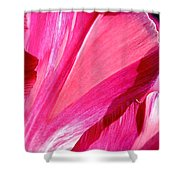 Hot Pink Shower Curtain by Rona Black