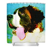 How Bout A Kiss - St Bernard Art by Sharon Cummings Shower Curtain by Sharon Cummings