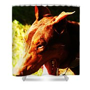 How Fast Can You Run Shower Curtain by PainterArtist FIN