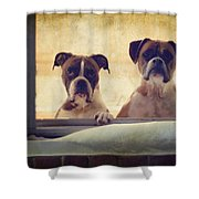 How Much Is That Doggie In The Window? Shower Curtain by Stephanie McDowell