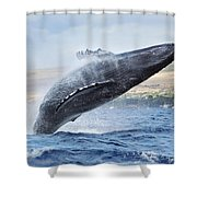 Humpback Whale Shower Curtain by M Swiet Productions