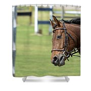 Hurdle Race Shower Curtain by Amir Paz